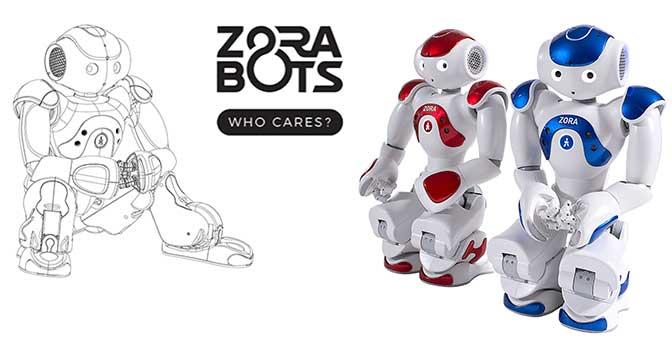 NAO Zora Robot