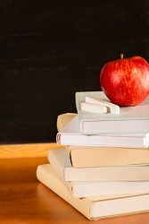 Government changes to School Curriculum
